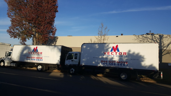 Grizzly Movers, LLC, San Diego