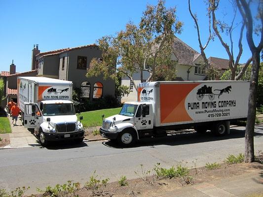 Puma Moving, San Francisco